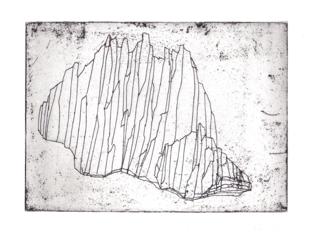 Hard ground etching on Somerset 300gsm Paper size 28 x 38 cm